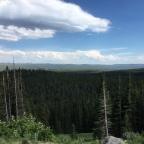 Wild, Wild West 2018 – Yellowstone in One Day